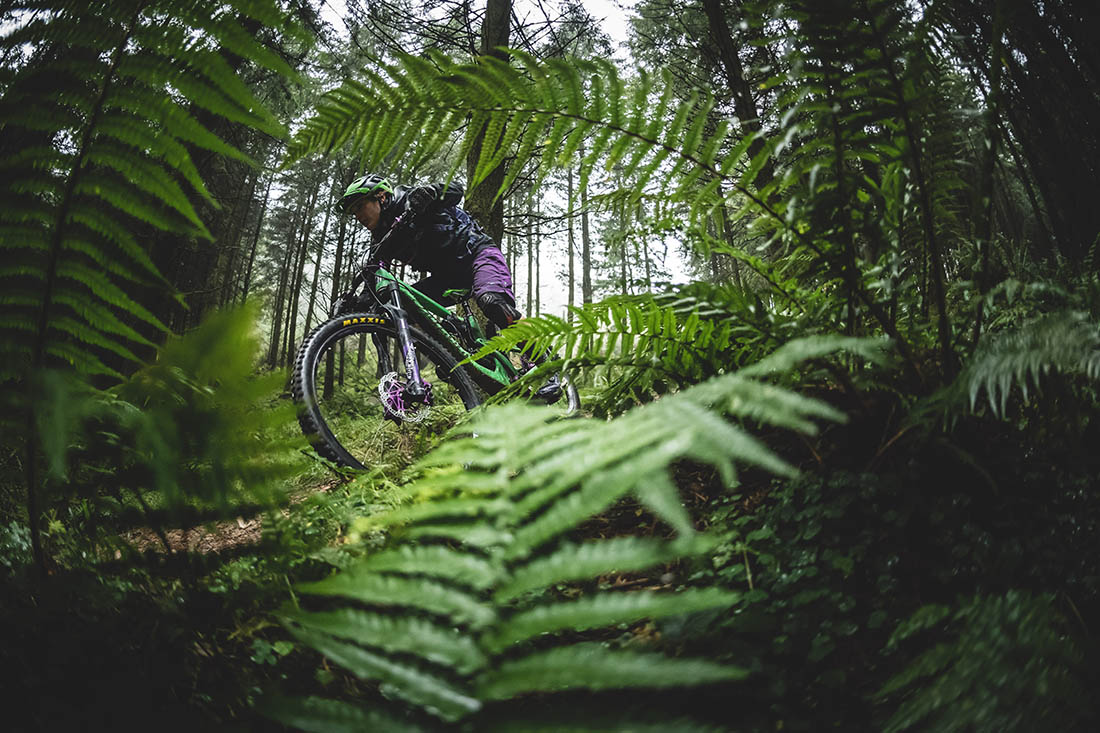 Juliana Bicycles - Fast Through the Ferns Aboard the Strega