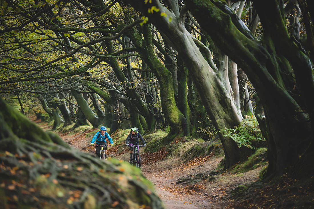Juliana Bicycles - Riding Through the Trees in Triscombe