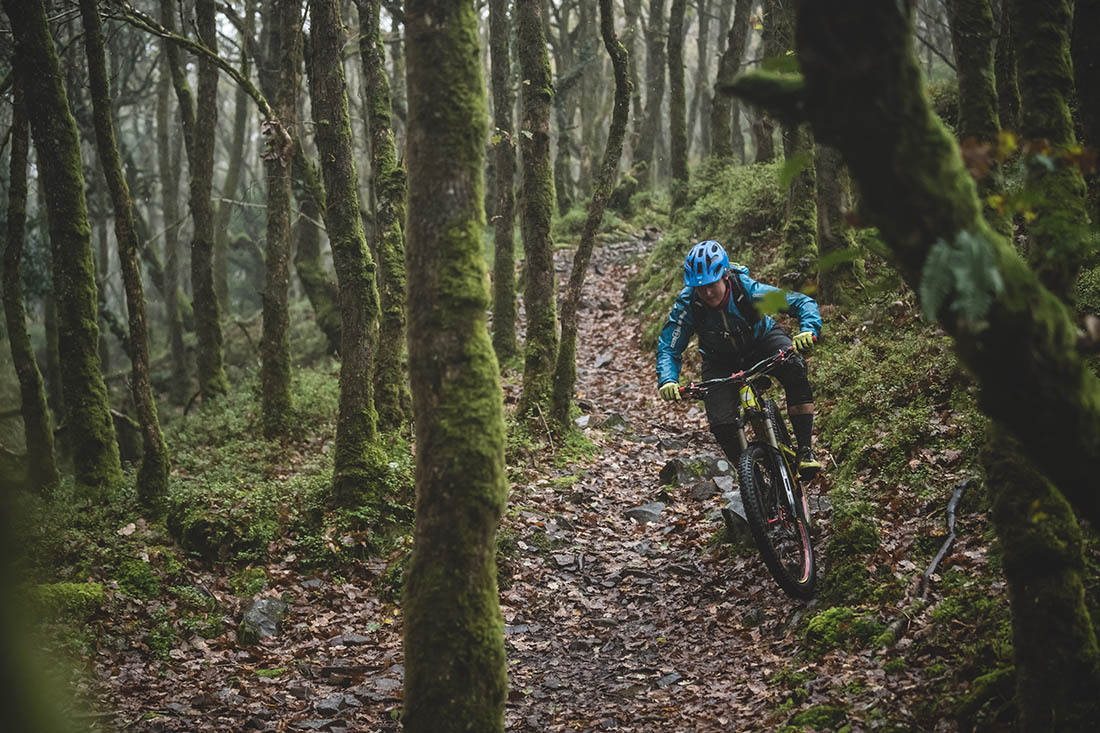 Juliana Bicycles - Dropping Into the English Woodland on a Juliana