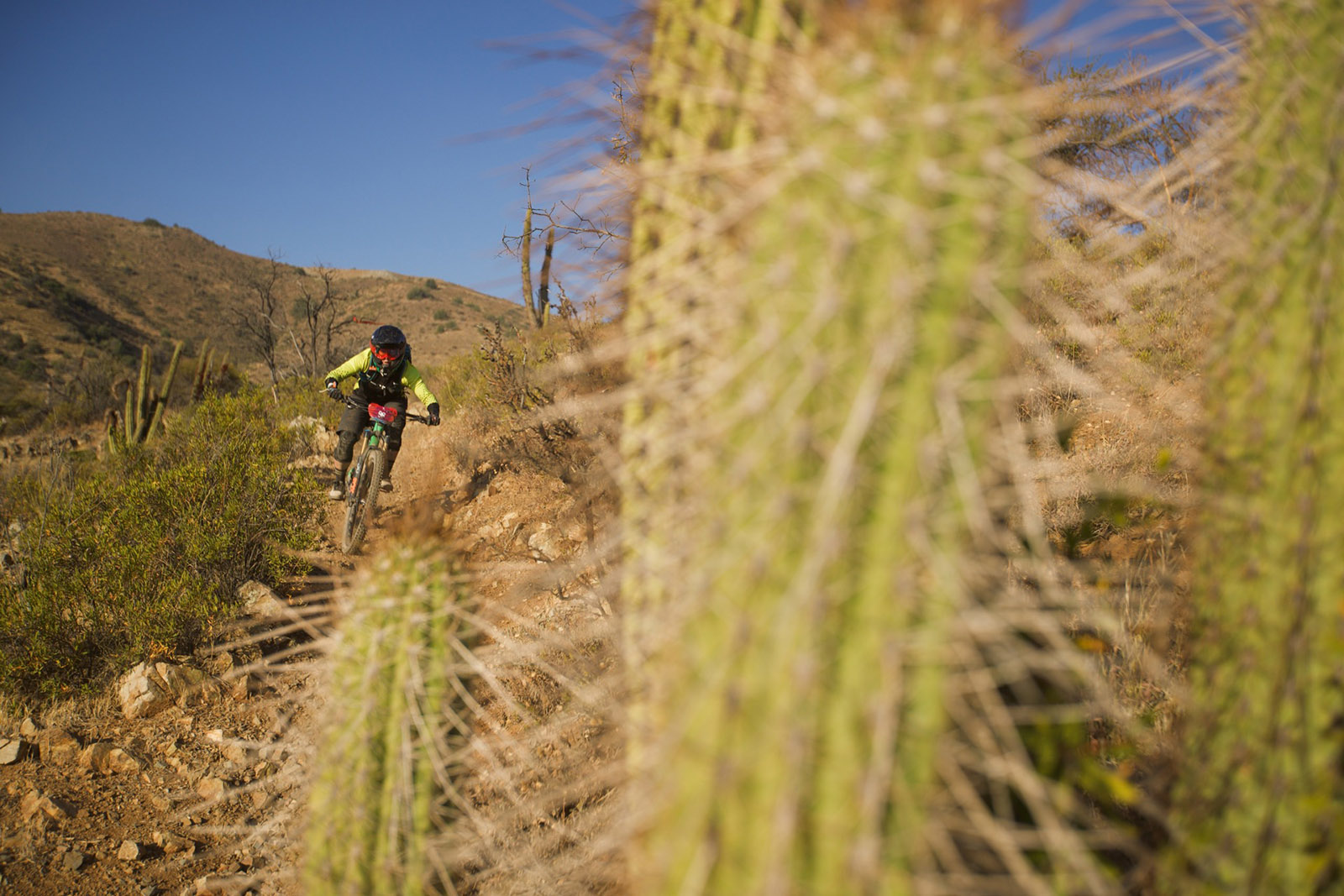 Juliana Bicycles - Cactus and Jaime Hill at Andes Pacifico 2018 Race